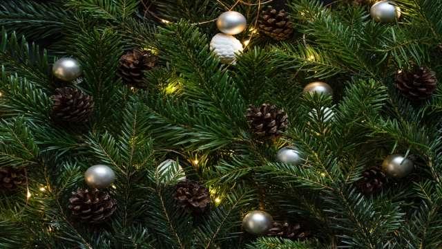 Είναι το χριστουγεννιάτικο δέντρο ένα αρχαιοελληνικό έθιμο;
